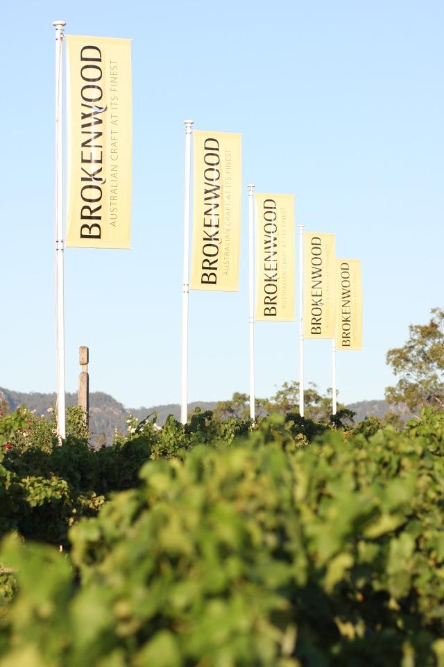 Brokenwood-vineyard-cellarmaster-wines